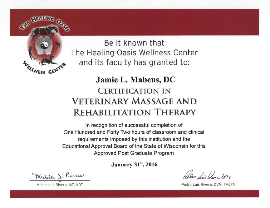 Dr Jamie Full Motion Family Chiropractic Veterinary Spine